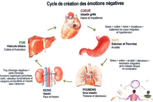 Cercle émotions négatives